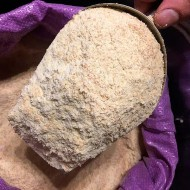 Farine de blé complet 1 Kg