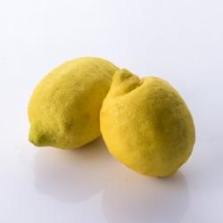 Citrons 1kg